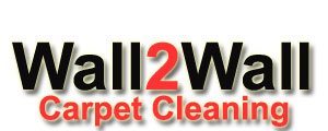 Wall2Wall Carpet Cleaner